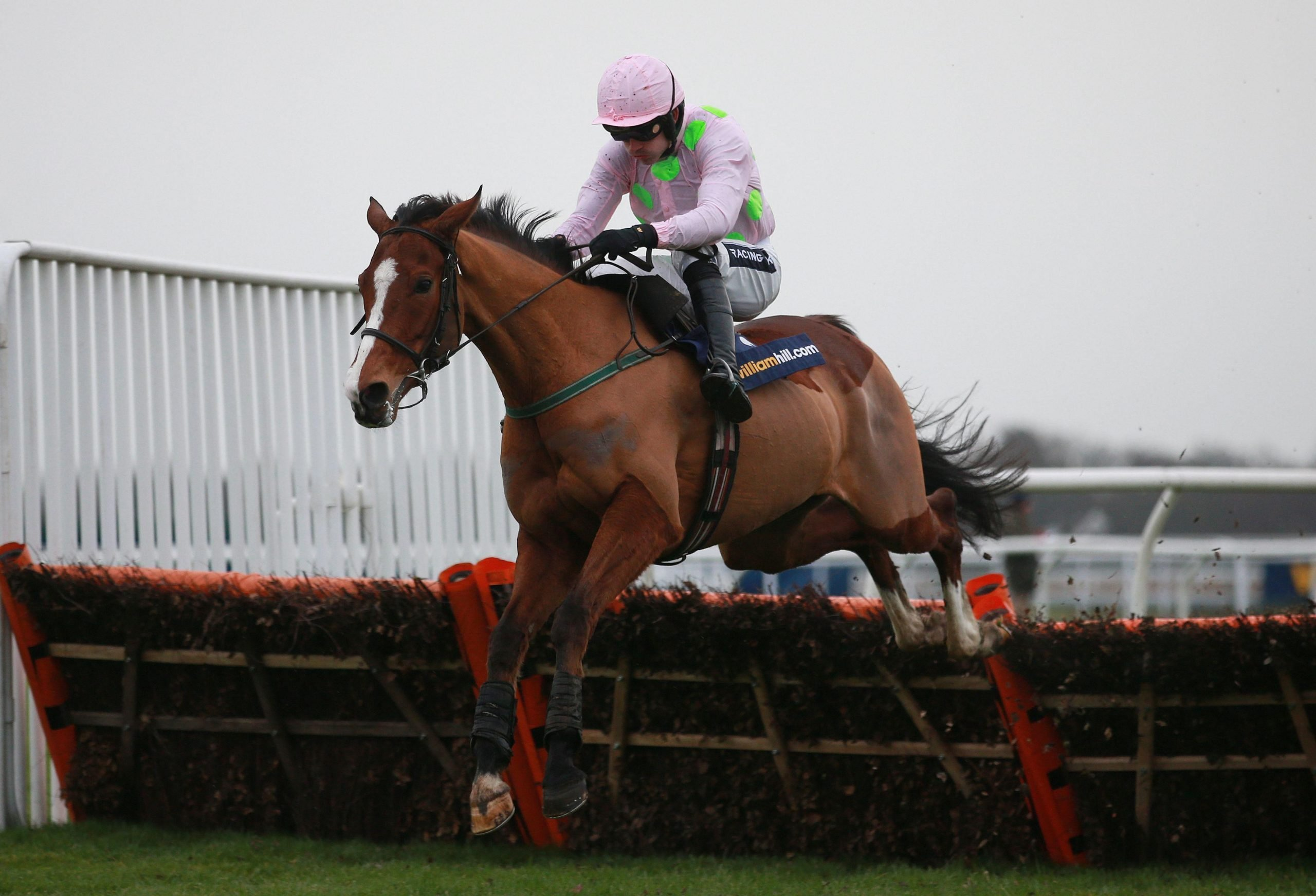Horse Racing - 2014 William Hill Winter Festival - Day One - Kempton Park