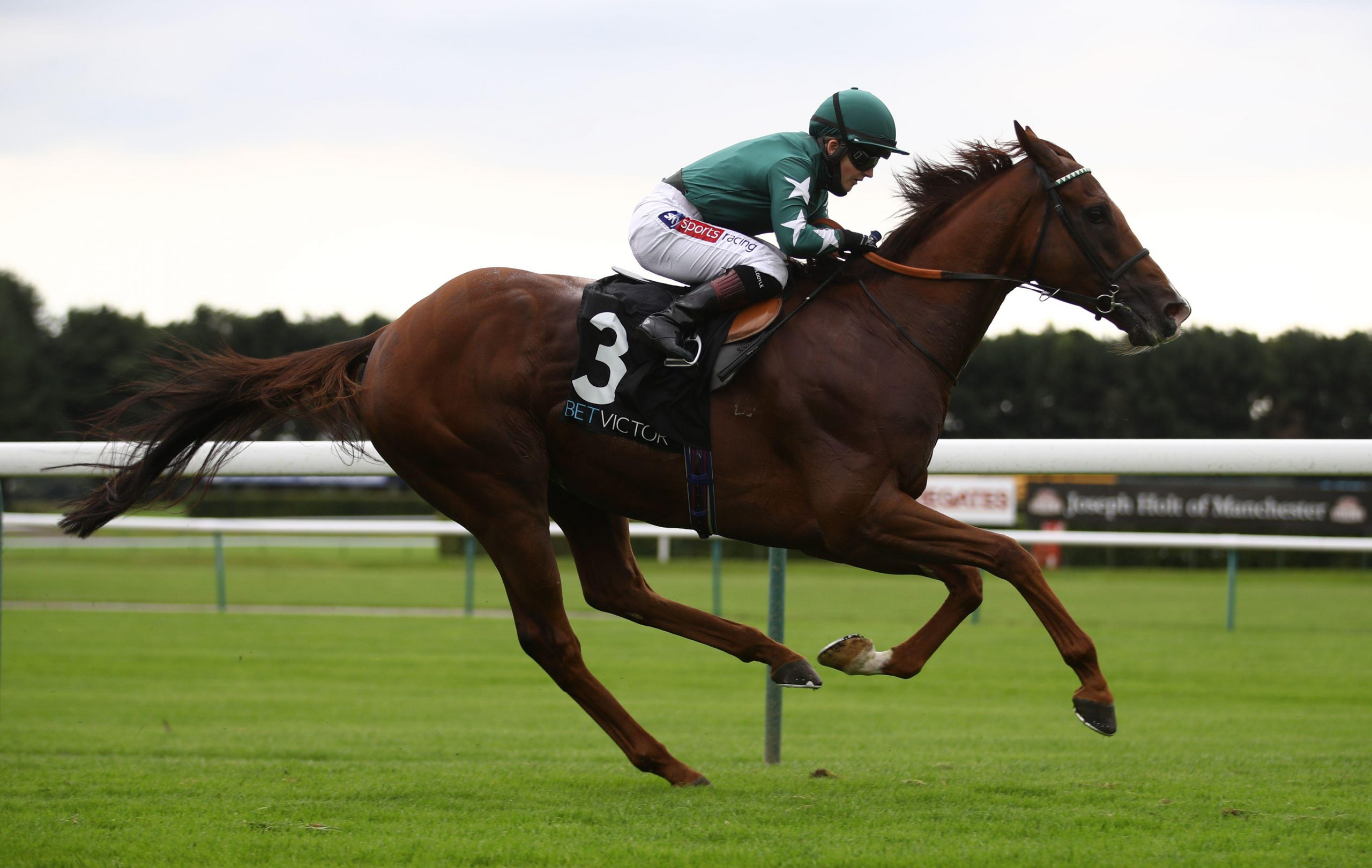 2CAPYM2 Extra Elusive ridden by Hollie Doyle wins The BetVictor Rose Of Lancaster Stakes at Haydock Park Racecourse, Haydock.