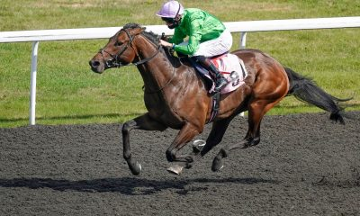 Robert Havlin riding Uncle Bryn wins the British Stallion Studs EBF Maiden Stakes at Kempton Park Racecourse.