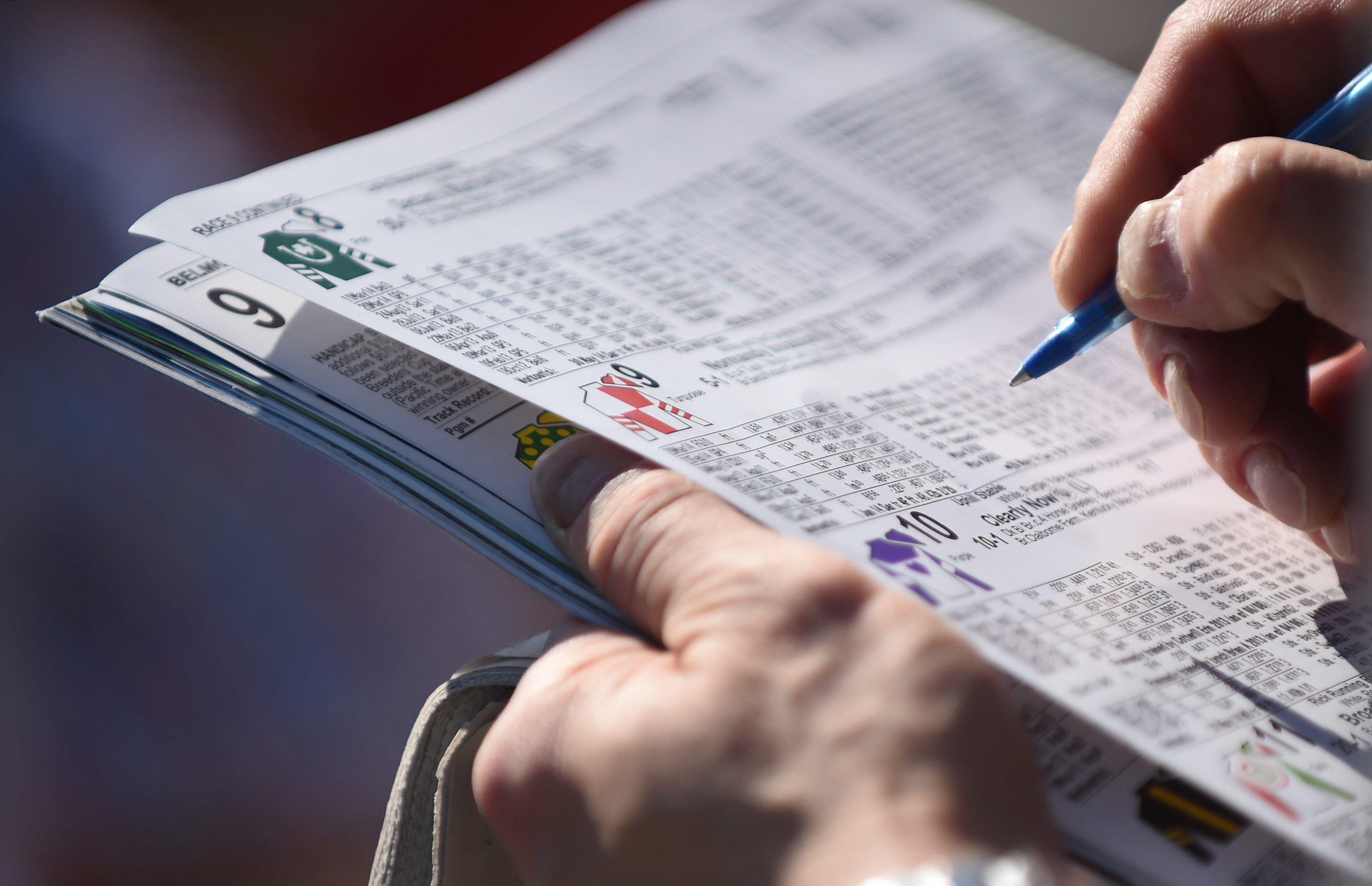 Horse Racing Tracker Notes